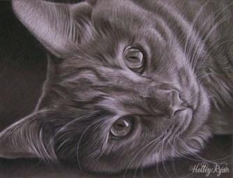 black and white kitty1b