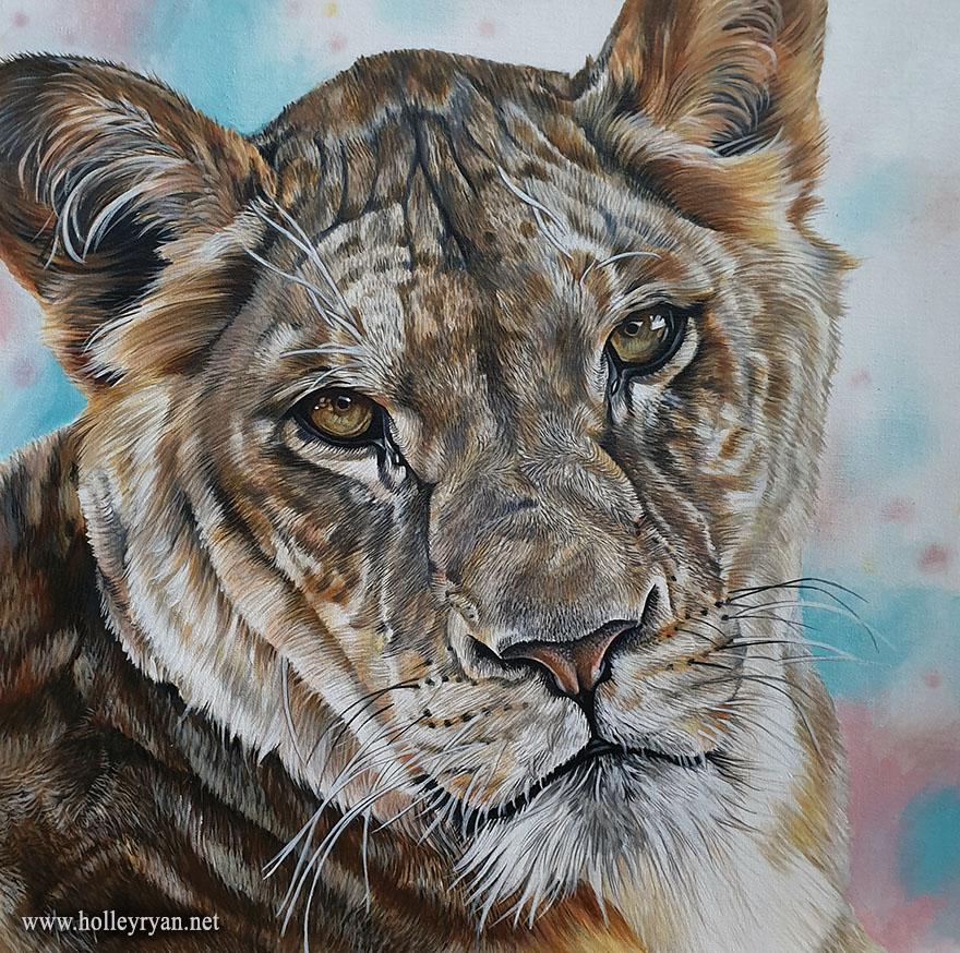 lioness10b